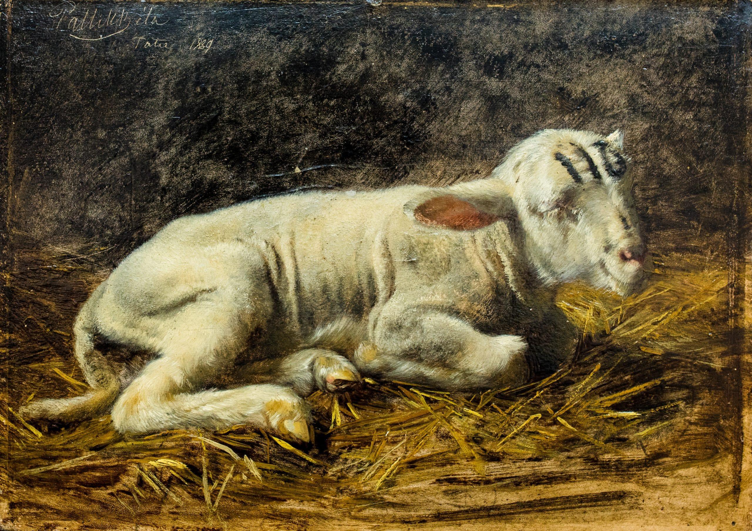 Pállik Béla: Borjú, 1889